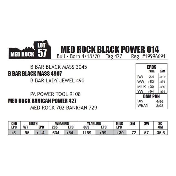 MED ROCK BLACK POWER 014