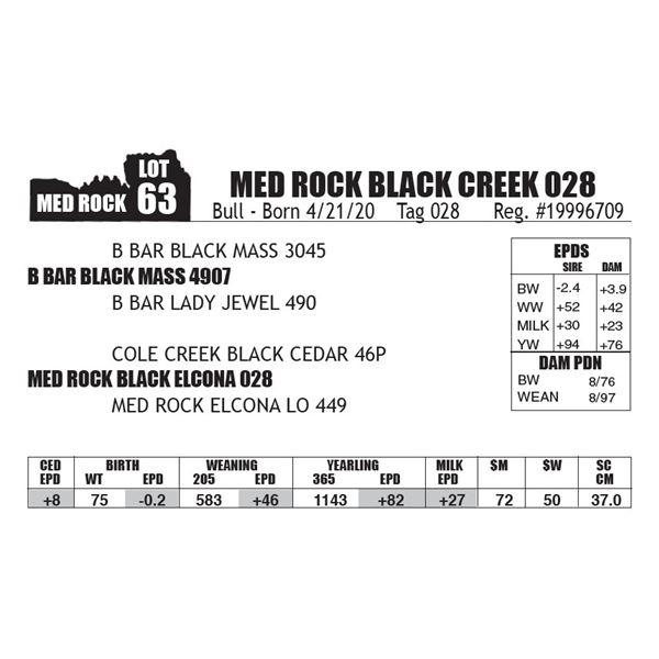 MED ROCK BLACK CREEK 028