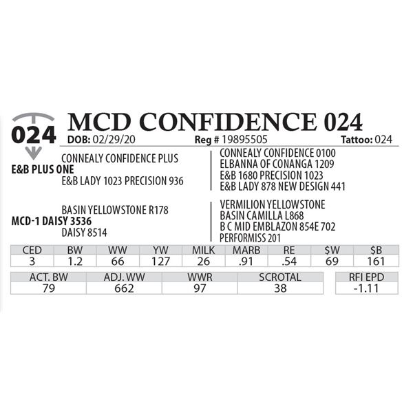 MCD CONFIDENCE 024
