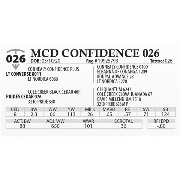 MCD CONFIDENCE 026