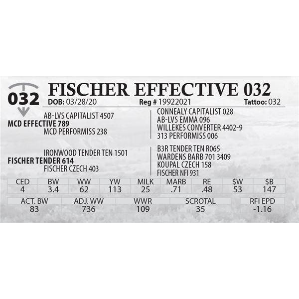 FISCHER EFFECTIVE 032