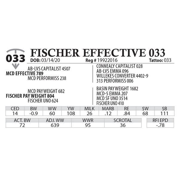FISCHER EFFECTIVE 033