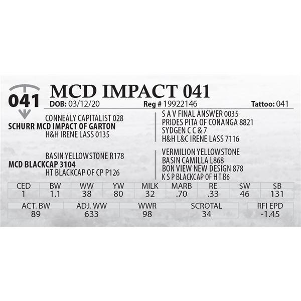 MCD IMPACT 041
