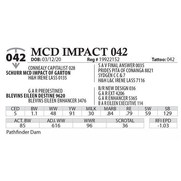 MCD IMPACT 042