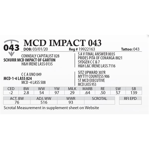 MCD IMPACT 043
