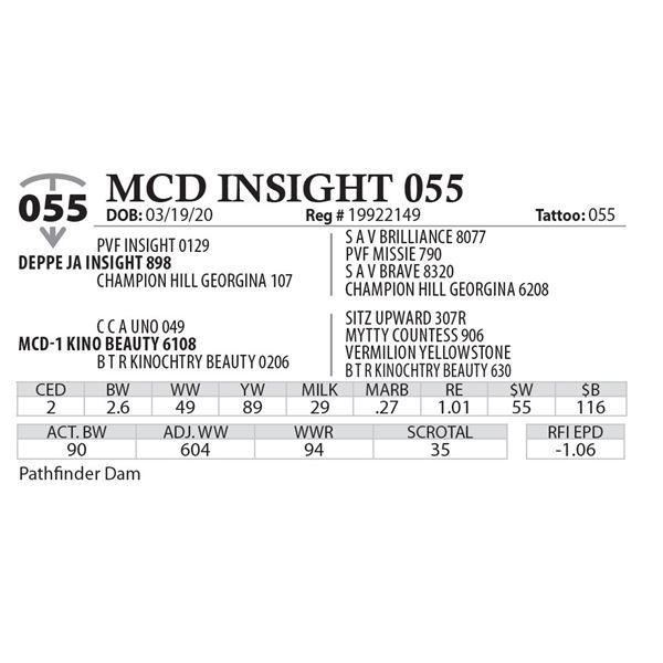 MCD INSIGHT 055