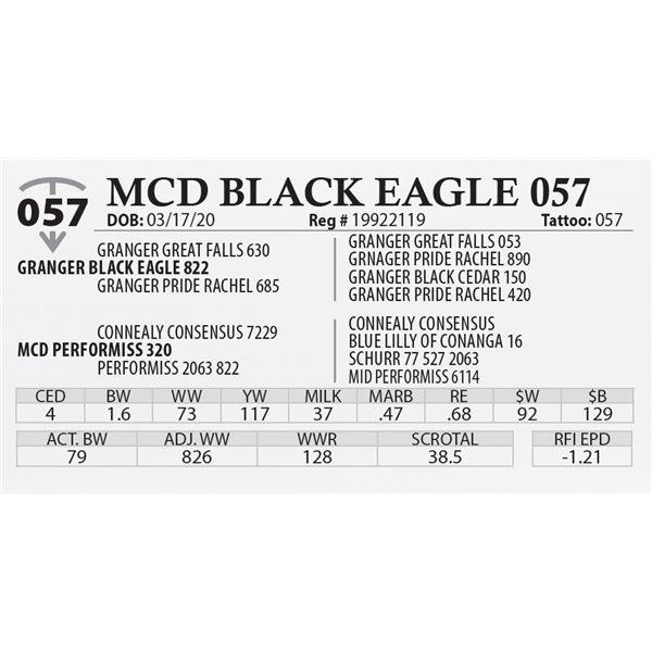 MCD BLACK EAGLE 057