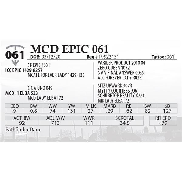 MCD EPIC 061