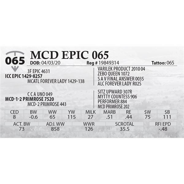MCD EPIC 065