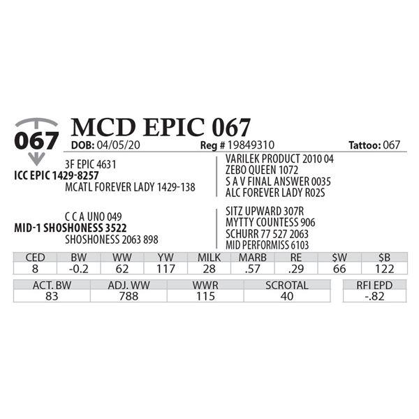 MCD EPIC 067