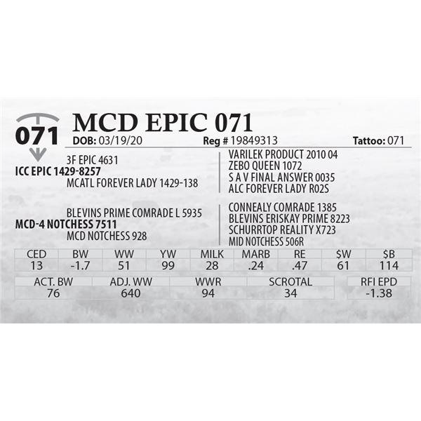 MCD EPIC 071