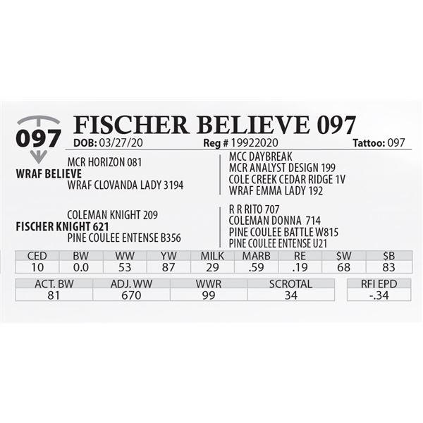 FISCHER BELIEVE 097