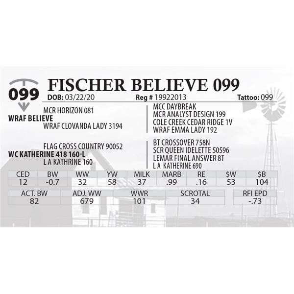 FISCHER BELIEVE 099