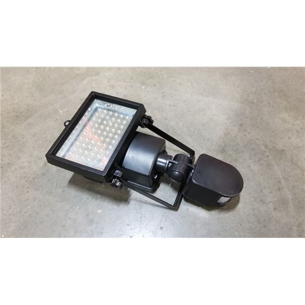 Portable motion sensor light