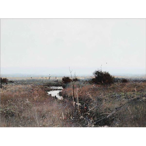 Michael Coleman -Autumn Meadow