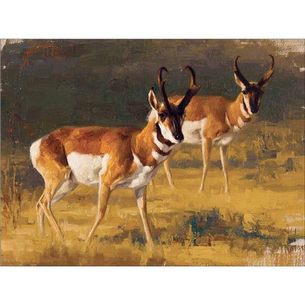 Greg Beecham -Two Antelope