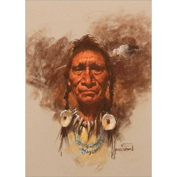 Harley Brown -Bull Plume Blackfoot