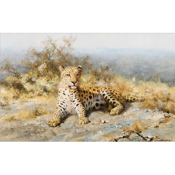 David Shepherd -Cheetah