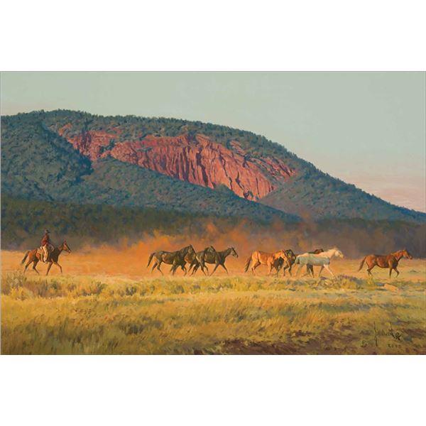 Bill Owen -His String of Horses