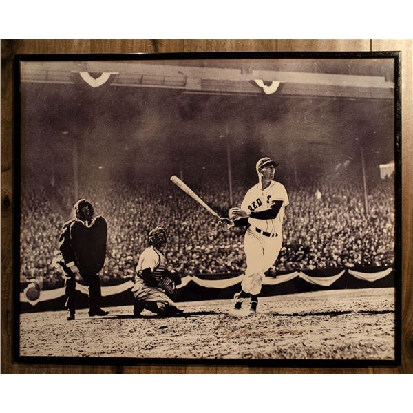 Autographed Photo - Ted Williams