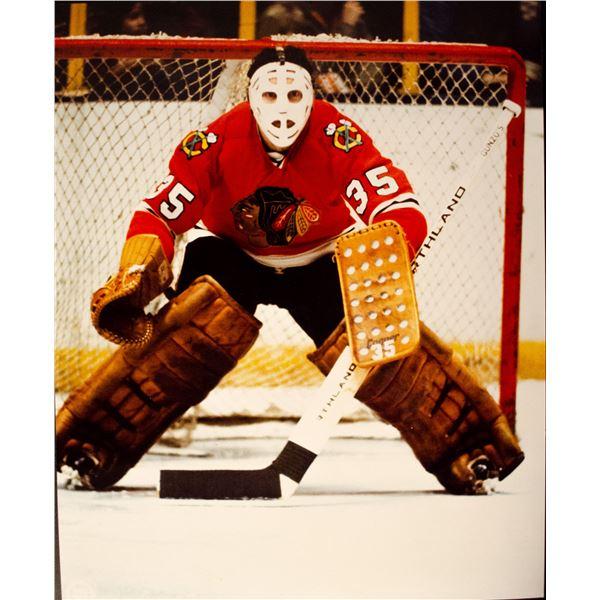 (17) Tony Esposito 8x10 Official NHL Photo