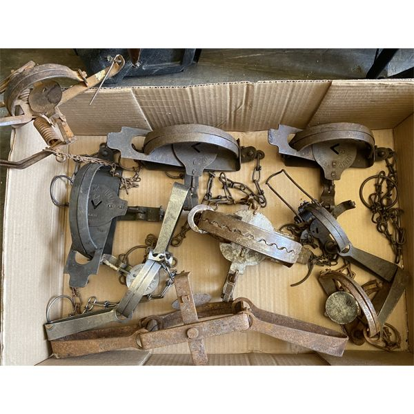 LOT OF ANTIQUE STEEL TRAPS