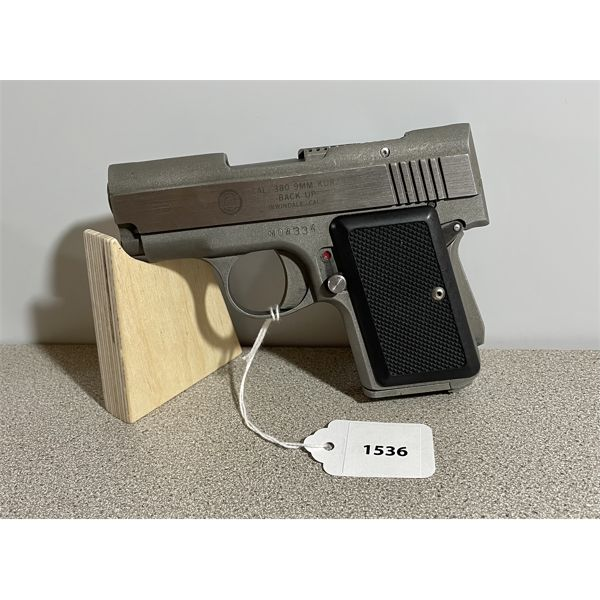 AMT BACK UP MODEL IN .380 AUTO - PROHIB CLASS
