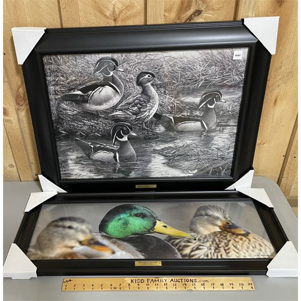 LOT OF 2 - FRAMED WATER FOWL PRINTS