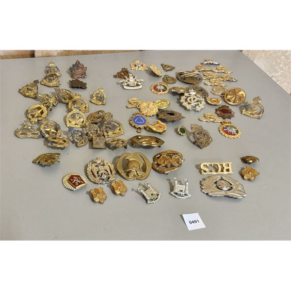 MISC LOT OF MILITARY PINS & BADGES