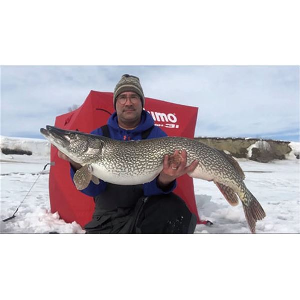Pike spearing and ice fishing adventure in North Dakota