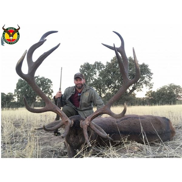 Iberian Red Deer Hunt in Spain – Giuseppe Garrizosa