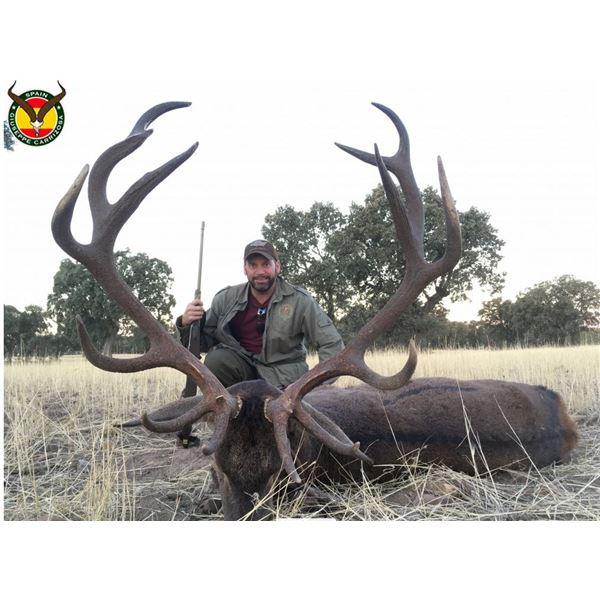 Iberian Red Deer Hunt in Spain – Giuseppe Garrizosa