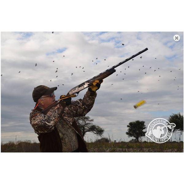 Dove + Pigeon Hunting/Golden Dorado Fishing in Argentina - Wingshooting Unlimited