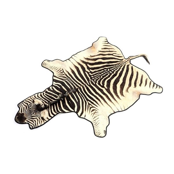 Zebra Taxidermy Full Mount Felted Room Hide Rug