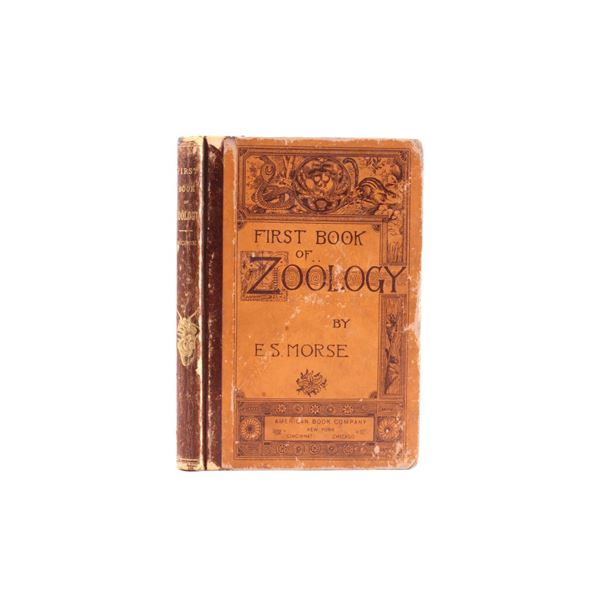 1875 First Book of Zoology by Edward Morse