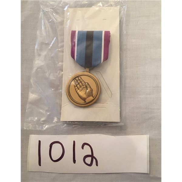 1012 - American Military Humanitarian service medal