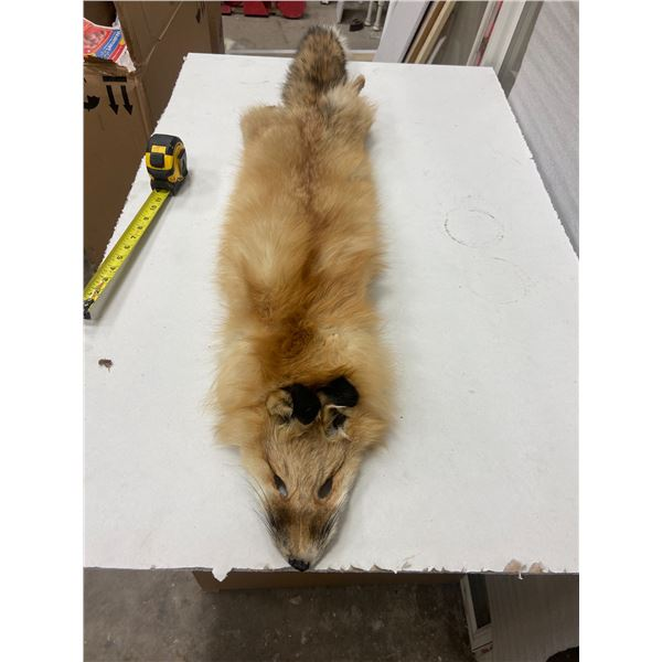 "Fox pelt - approx 50"" long"