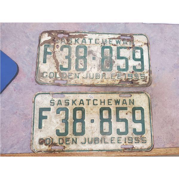 pair of 1955 license plates