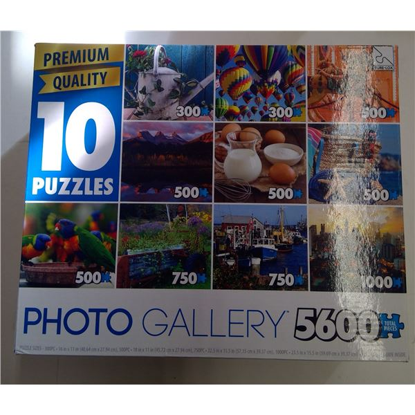 Box Set of 10 Puzzles