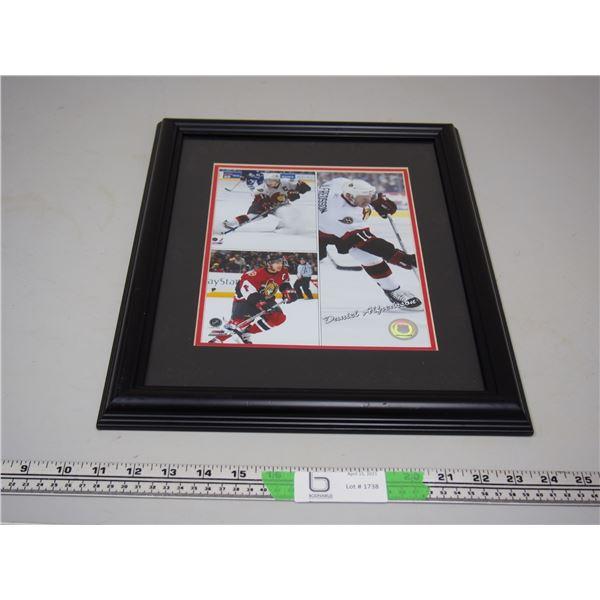 """NHL Official Licensed Product NR00602628 Photo File Daniel Alfredsson Framed 12.5"""" x 16 1/3"""" frame"""