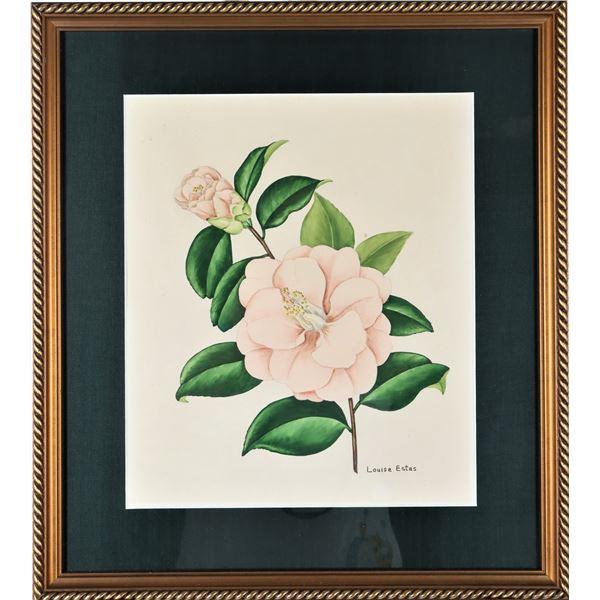 Louise Estes (20th c) American, Botanical W/C