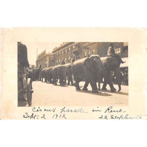 Reno, Nevada Circus Parade Elephants in the street Real Photo Postcard