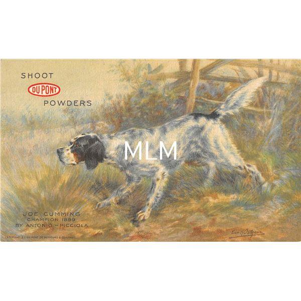Dupont Powders Dog Joe Cumming Champion 1899 Advertising Postcard