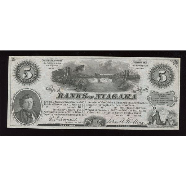 Banks of Niagara - Niagara, Falls, NEW YORK Advertising Note