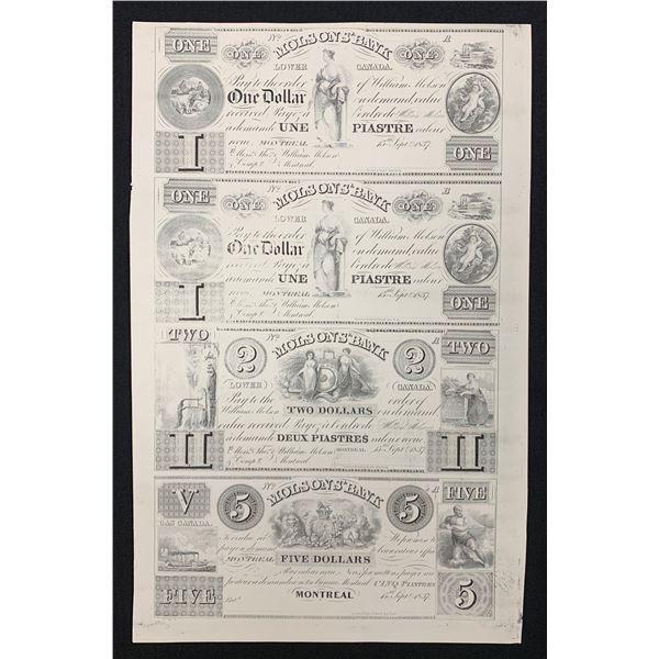Molsons Bank,Rawdon, Wright & Hatch 15/Sep/1837