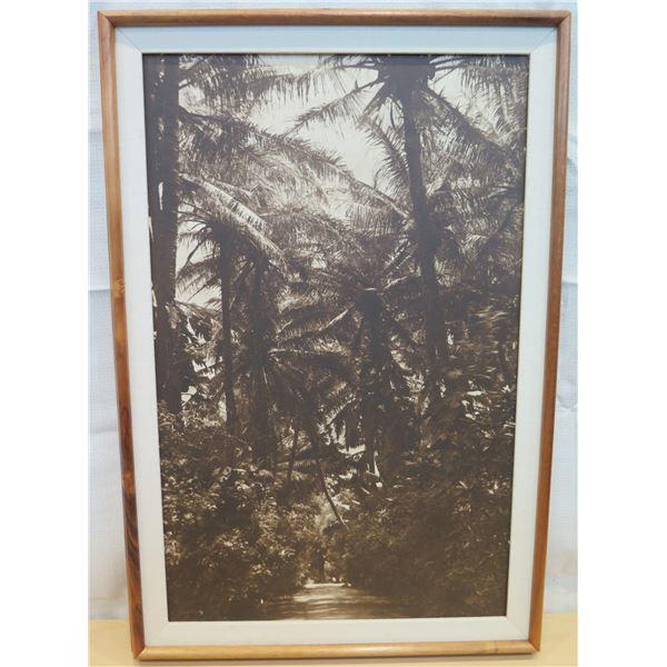 """Black & White Art Print Matted & Wood-Framed 22""""x32"""""""