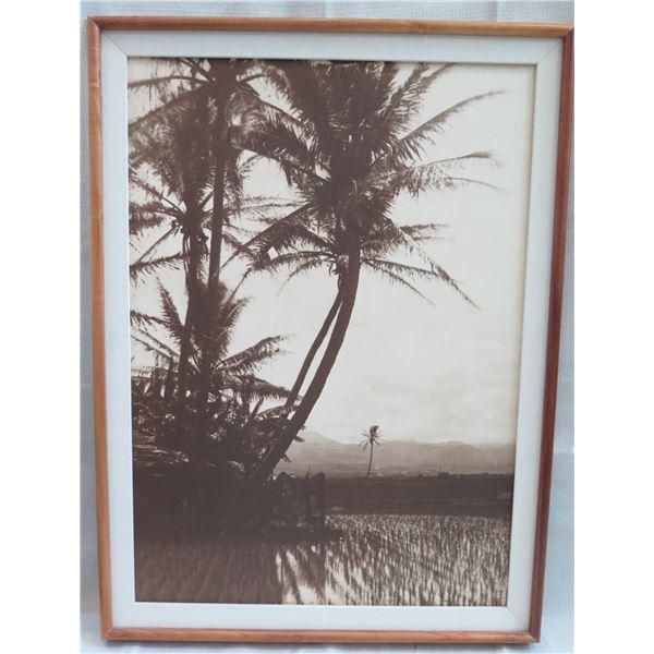 "Black & White Beach Scene Print Matted in Wooden Frame 24""x32"""