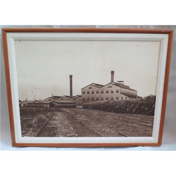 """Black & White Sugar Mill Print Matted in Wooden Frame 32""""x24"""""""