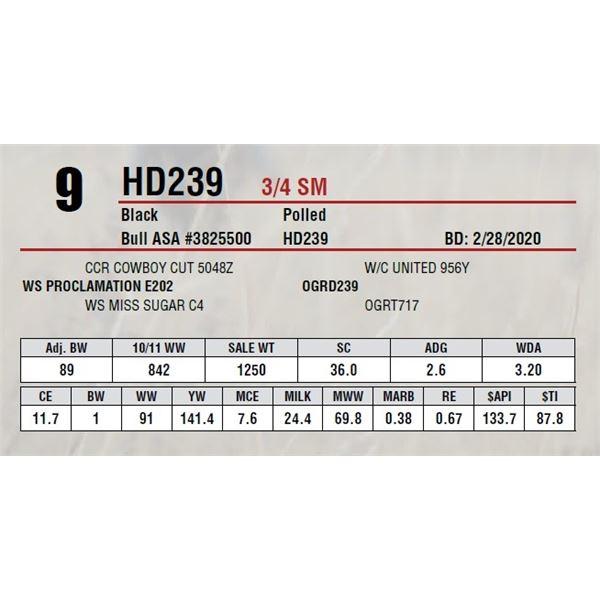 HD239