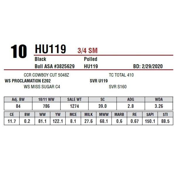HU119